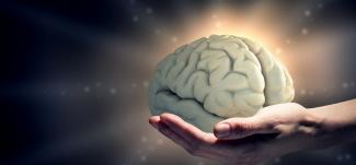 Hjernerystelse - behandling vigtig - Mybodyandmind x151